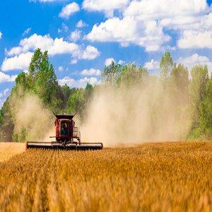 6.1. Стартова помощ за млади земеделски производители