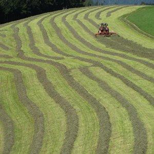 """Публикуван е финалния вариант на Наредба за условията и реда за прилагане на подмярка 4.1 """"Инвестиции в земеделски стопанства"""" от Програма за развитие на селските райони 2014-2020"""